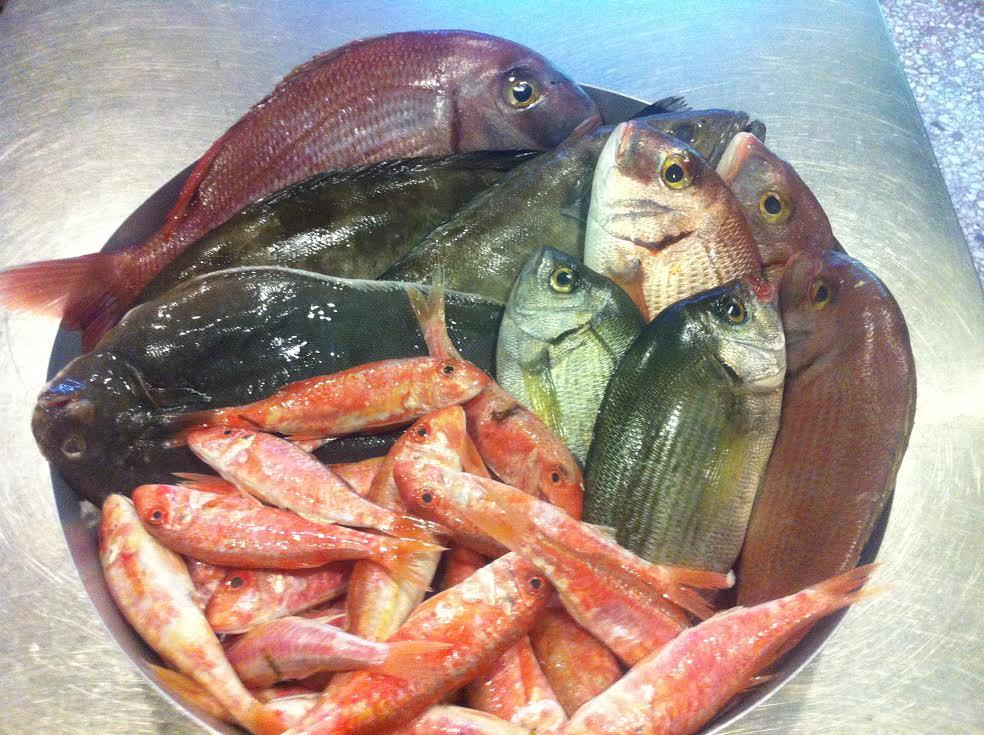Ραντεβού λογοπαίγνια ψαριών