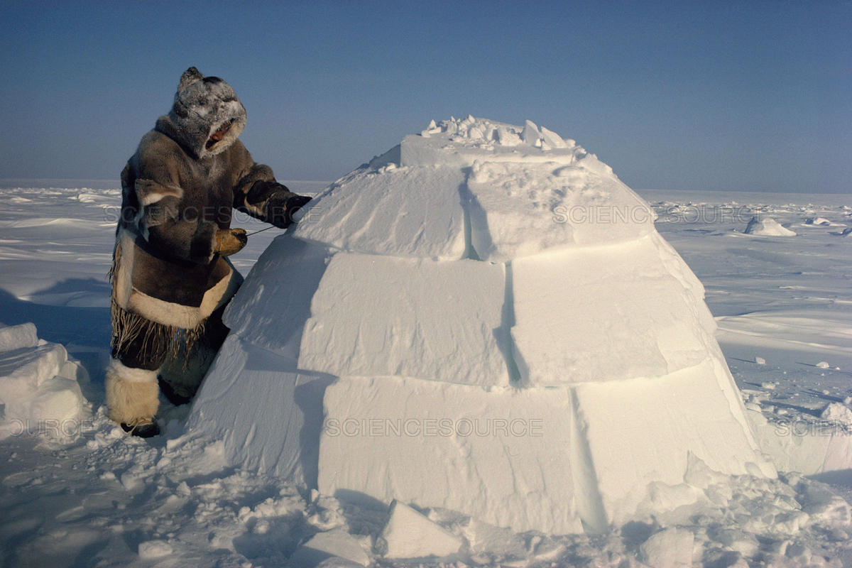 Images of Inuit Igloo Facts - #rock-cafe